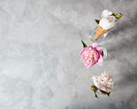 Blooming pions in a wafer cones and glass vases on a gray background, place for text.