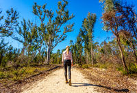 Walking along a bush trail in Australia