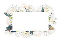 Abstract design of flowers frame background isolated over white