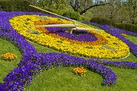 Blumenuhr, l'horloge fleurie, am Park Jardin Anglais, Genf, Schweiz
