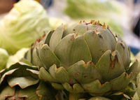 Green fresh globe artichokes on market stall
