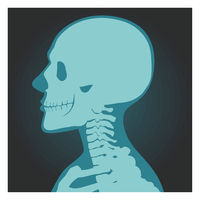X-ray shot of skull, human body, head and neck bones side view, radiography, vector illustration.