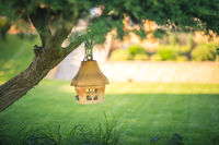 Clay or ceramic bird feeder hanging on a tree in the garden, soft blurry background