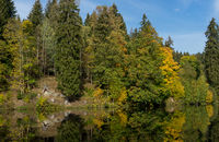 Tiny lake with the name Neuer Teich