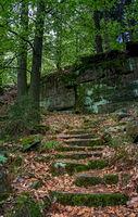 Steintreppe im Wald