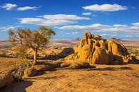 Stone in the Desert Namib
