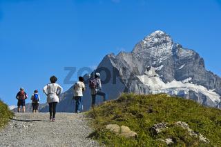 Wanderer im Wandergebiet Grindelwald First, hinten das Wetterhorn, Grindelwald,Schweiz