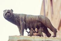 Rome wolf