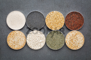 sand samples from beaches in Florida, California and Hawaii