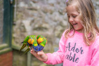 Cute girl feeding parrots in zoo
