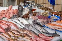 Marktstand mit frischem Fisch und Meeresfrüchten