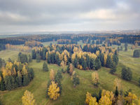 drone view of beautiful autumn trees in the park. Russia