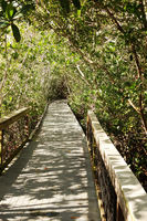 Darling National Wildlife Refuge path on Sanibel Island