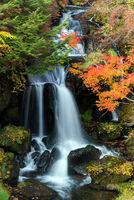 Ryuzu Waterfall Autumn forest Nikko Japan