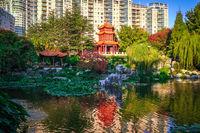 Chinese Garden of Friendship in Sydney, Australia