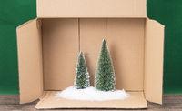 Tannenbaum aus dem Karton