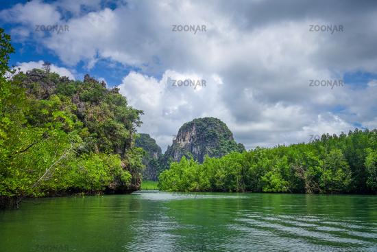 Mangrove and cliffs in Phang Nga Bay, Thailand