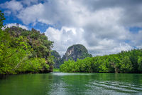 Mangrove and cliffs in Phang Nga Bay, Thailand