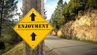 Street Sign to Enjoyment