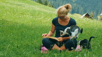 blonde girl reads a book with two kittens playing on a green lawn
