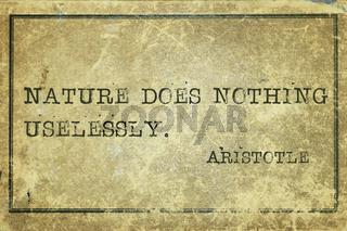 nature Aristotle