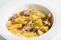 penne pasta with veal meat