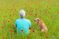 Man and dog in poppie field