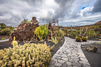 Cactuses in the Cactus garden, Lanzarote, Canary Islands, Spain