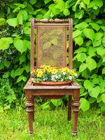 Alter Holzstuhl mit Blumentopf als Dekoration im Garten