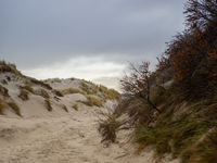 Dune landscape on the island Helgoland