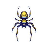 Danger exotic crawling spider, cartoon arachnid on white