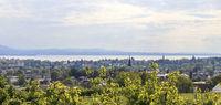 Bodenseeblick, Landschaftsbild