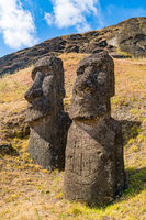 The large stone statue, Moai at Rano Raraku on Easter Island or Rapa Nui