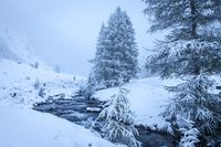 Mountain stream in the snow