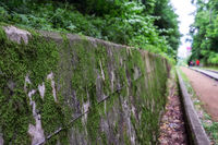 mossy wall in hangdong railroad