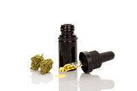 Medical marijuana, concentrate, herbal remedy.