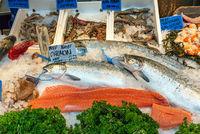 Lachsfilet und weiterer Fisch und Meeresfrüchte
