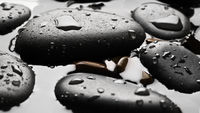 Black wet pebbles background wallpaper