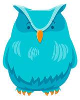 owl bird funny animal cartoon character