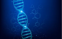 Wireframe DNA molecules structure mesh low poly consisting of points, lines, and shapes on dark blue background. Science and Technology concept