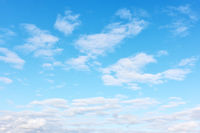 Light white clouds -  background