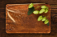 Background of fresh hop with barley grain and leaves.