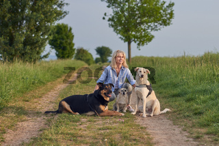 Attractive womanon a rural path with dogs at sunset
