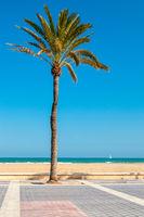 Malvarrosa beach, Valencia, Spain