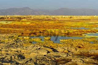 Schwefelgestein in einem hochgesättigten sauren Salzlaugenpool, Geothermalgebiet Dallol,Äthiopien