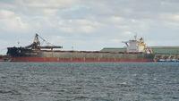 Global trade logistics, Bulk carrier