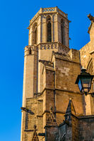 Barcelona Cathedral Exterior, Gothic District, Spain
