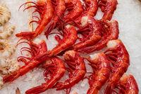 Rote Riesengarnelen auf einem Markt