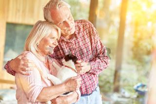 Altes Paar Senioren mit Katze schaut aus Fenster