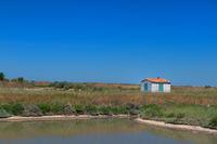Little house on Ile de Ré